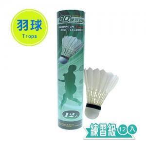 【芥菜籽文具】//成功體育文具 // 球類用品 //綠標練習羽球 (12入) 45090A